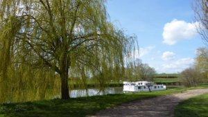 Hausboot an der Saône