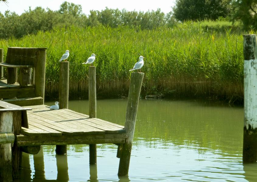 Idylle beim Hausbooturlaub in der Lagune Grado Marano