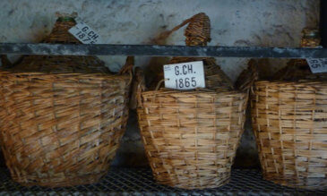 In der Cognackellerei Delamain