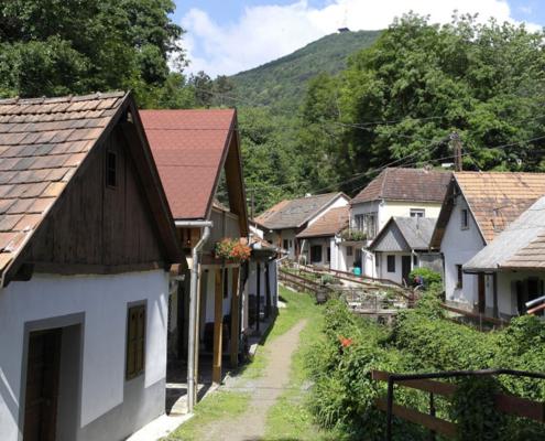 Weinregion tokaj